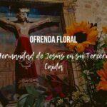 Ofrenda Floral P